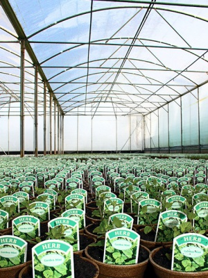 Strong Poly Tunnel Covers