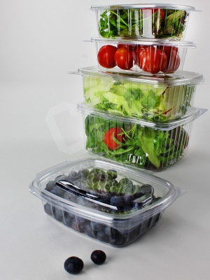 Salad Container Collection