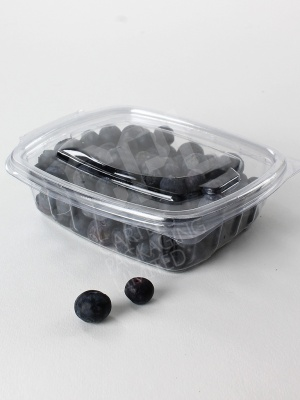 Small 250cc Salad Container