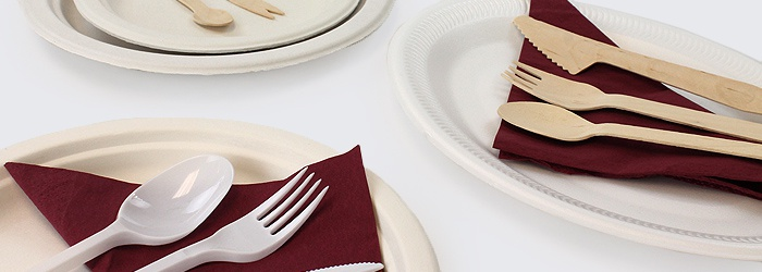 Disposable Dinnerwear for Food Service