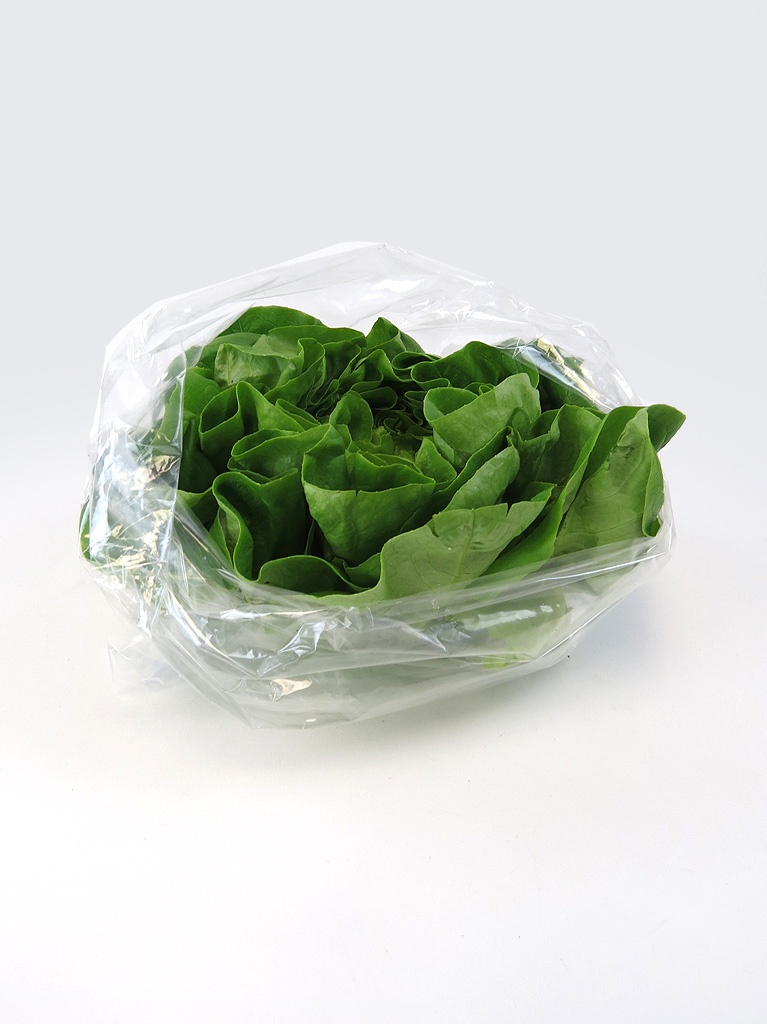 Non Wicketed Perforated Produce Bags Clear Lettuce