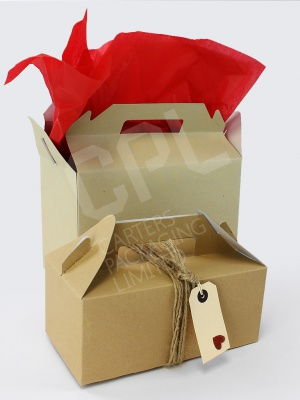 Cardboard Carry Packs - Great for Gifts!