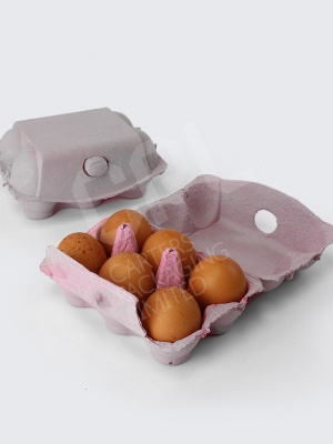 Grey Duck Egg Box for 6 Duck Eggs