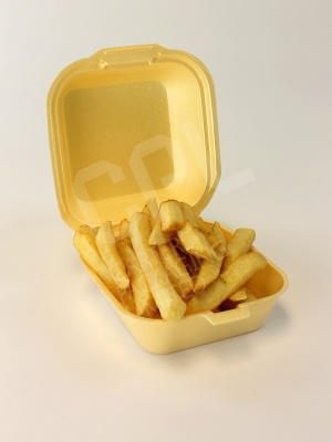 Regular Takeaway Burger Box