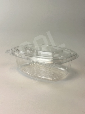 Medium 500ml Bio Salad Container