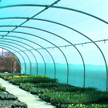 Polytunnel Covers | Polytunnels