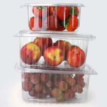 Salad Containers | Plastic Hinged Food Tubs