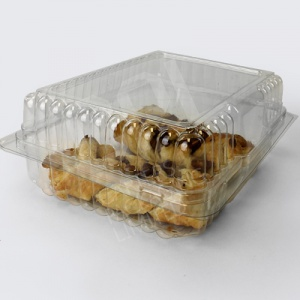 Large Plastic Hinged Food Container