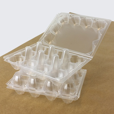 Download Quail Egg Boxes (12 Eggs)
