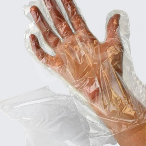 Clear LD Polythene Gloves