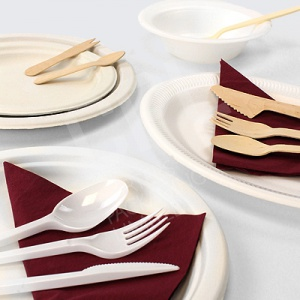 Disposable Tableware | Partyware