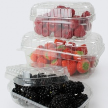 Punnet | Fruit Punnets | Plastic Containers