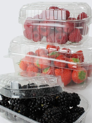 Clear Plastic Fruit Punnets